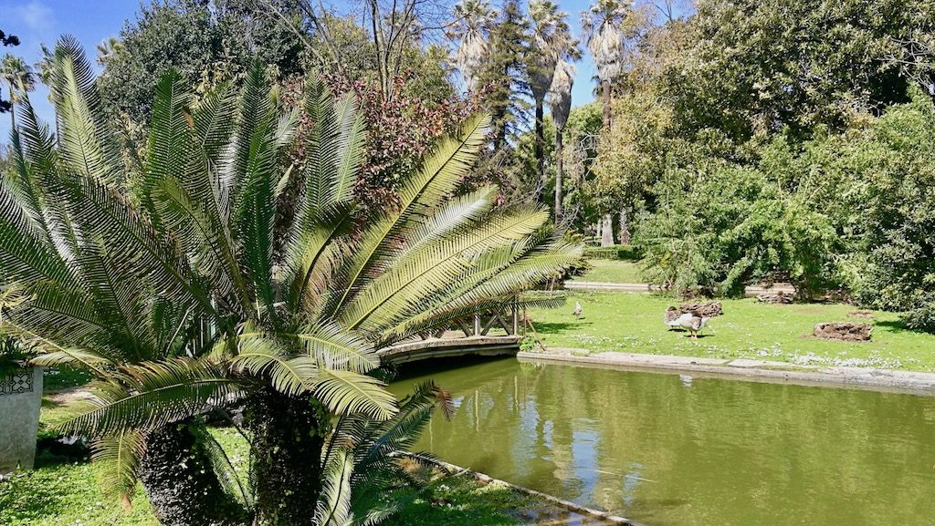 jardin_tropical_visiter_lisbonne_blog_voyage_good_morning_usa