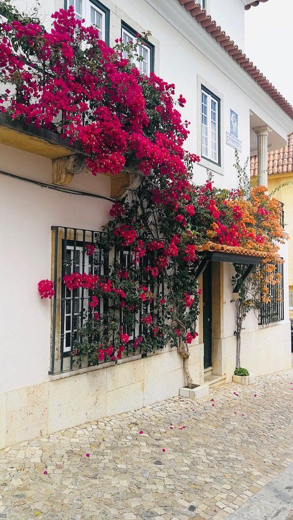 maison bordé de fleurs à cascais
